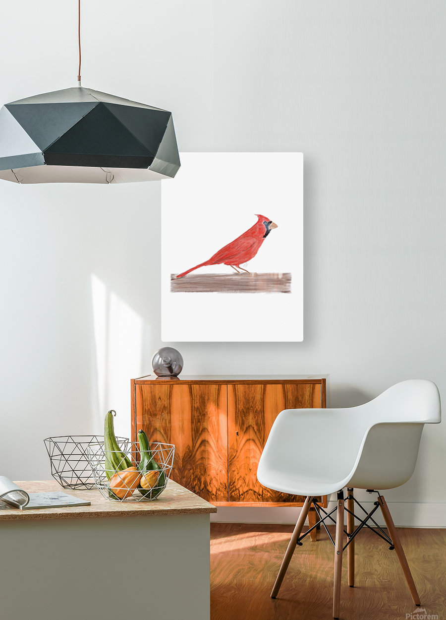 Cardinal  HD Metal print with Floating Frame on Back