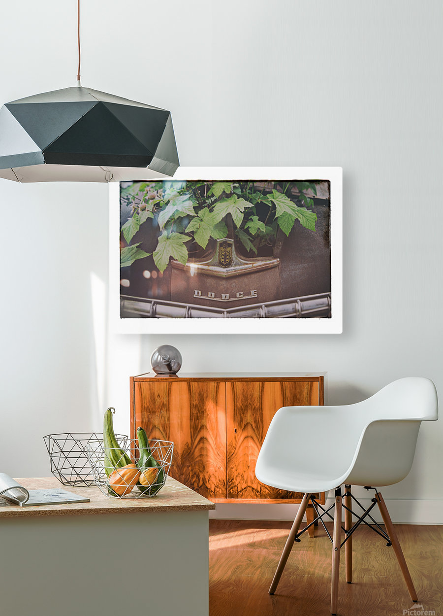 Left to Rust   HD Metal print with Floating Frame on Back