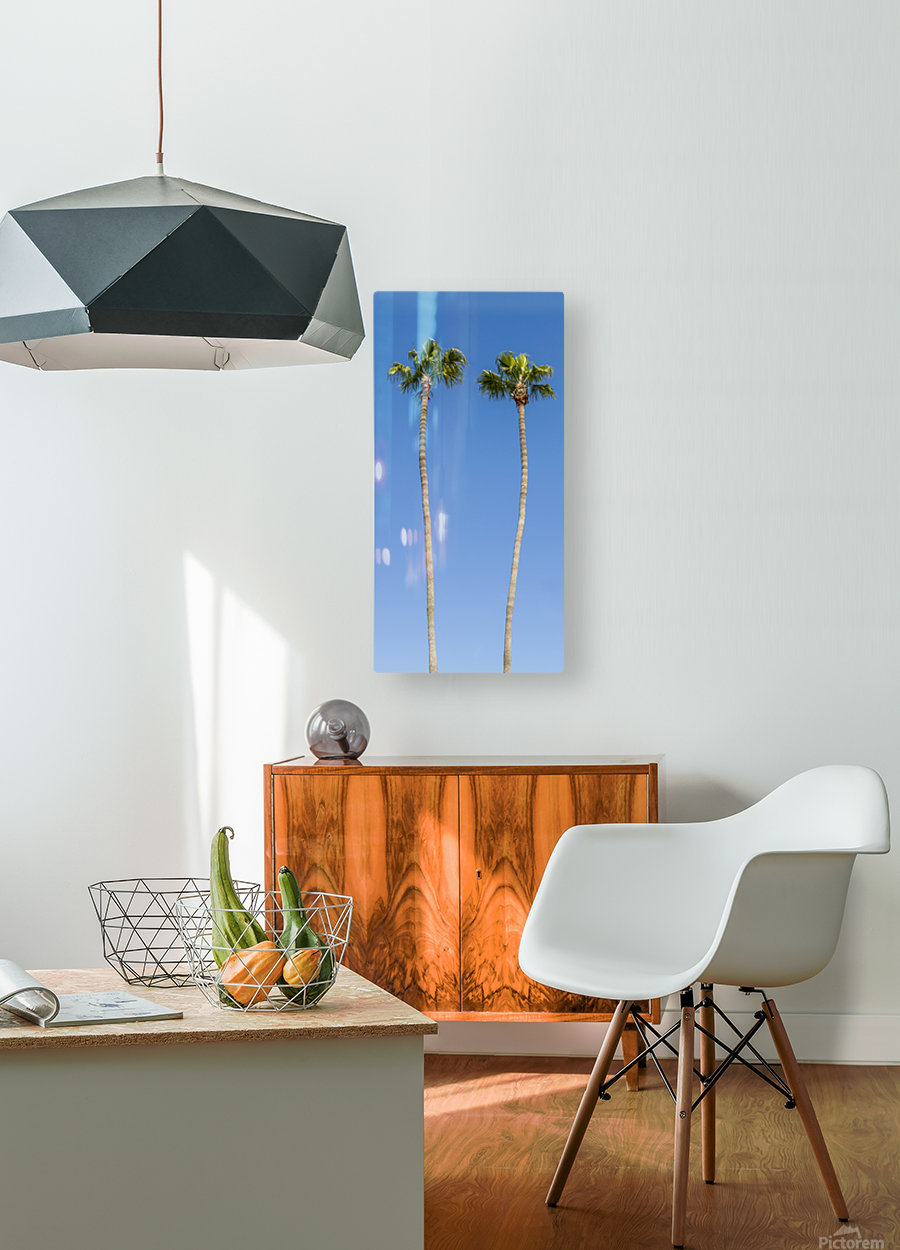 Idyllic Palm trees  HD Metal print with Floating Frame on Back