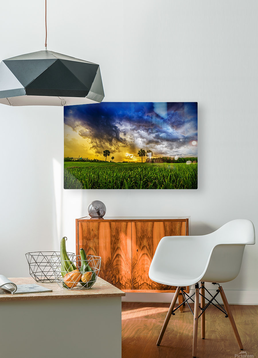 Florida Sunset  HD Metal print with Floating Frame on Back