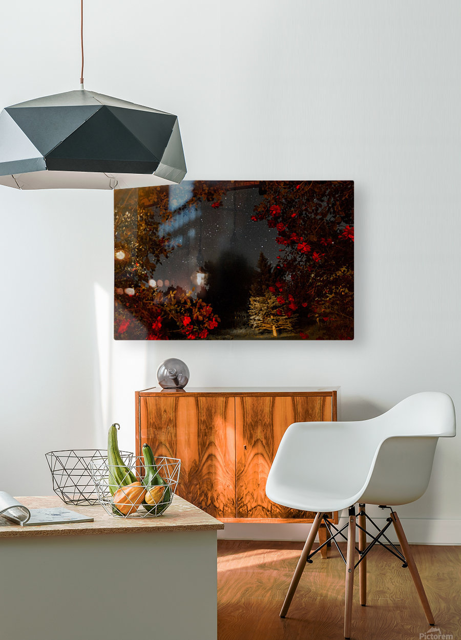 Roses and Stars   HD Metal print with Floating Frame on Back