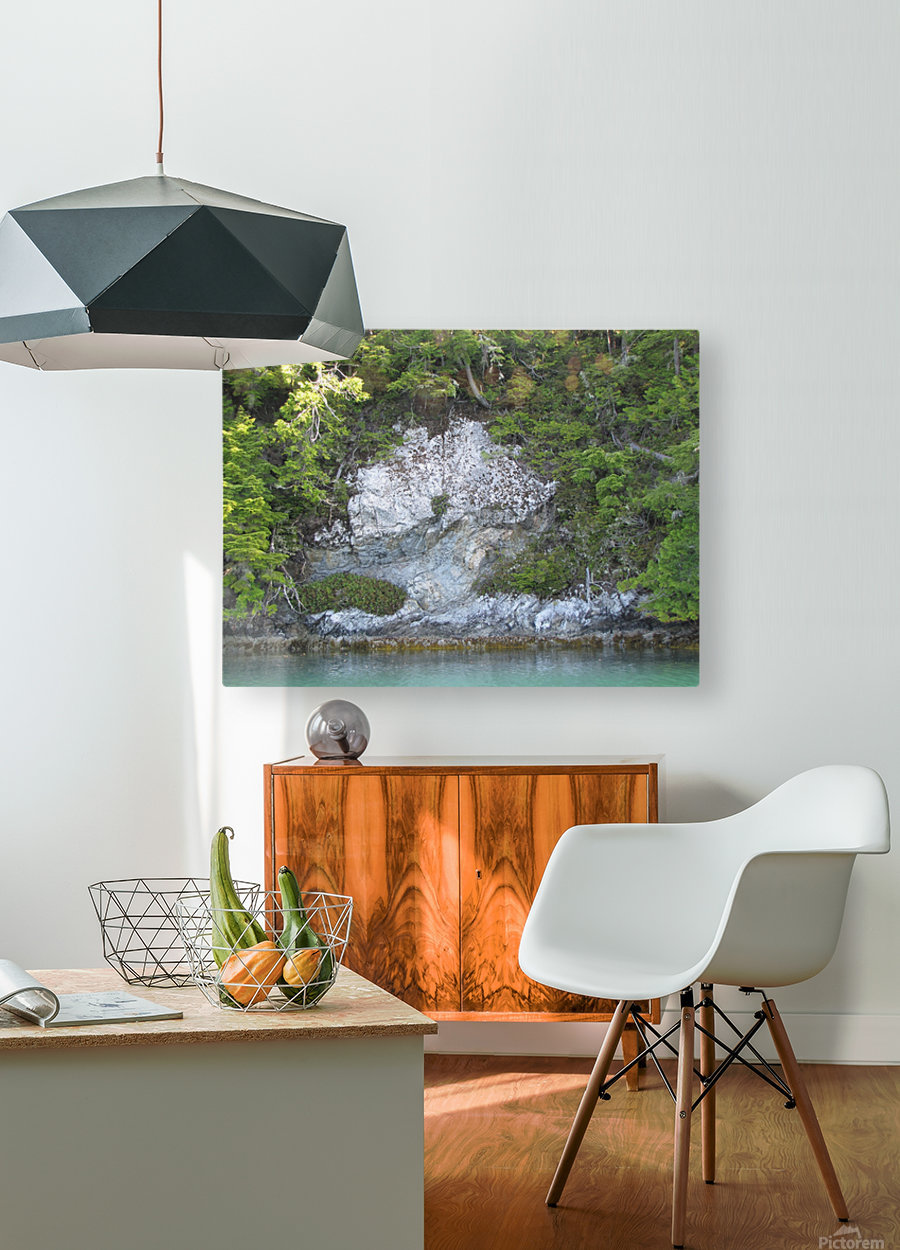 White rock  HD Metal print with Floating Frame on Back