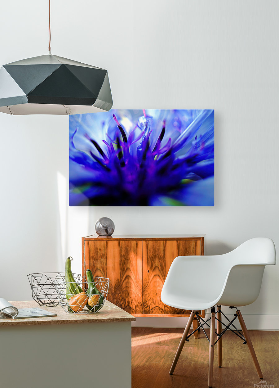 Abstract Pop Color Flower Photography 01  HD Metal print with Floating Frame on Back