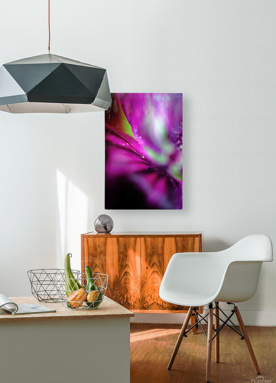 Abstract Pop Color Flower Photography 05  HD Metal print with Floating Frame on Back