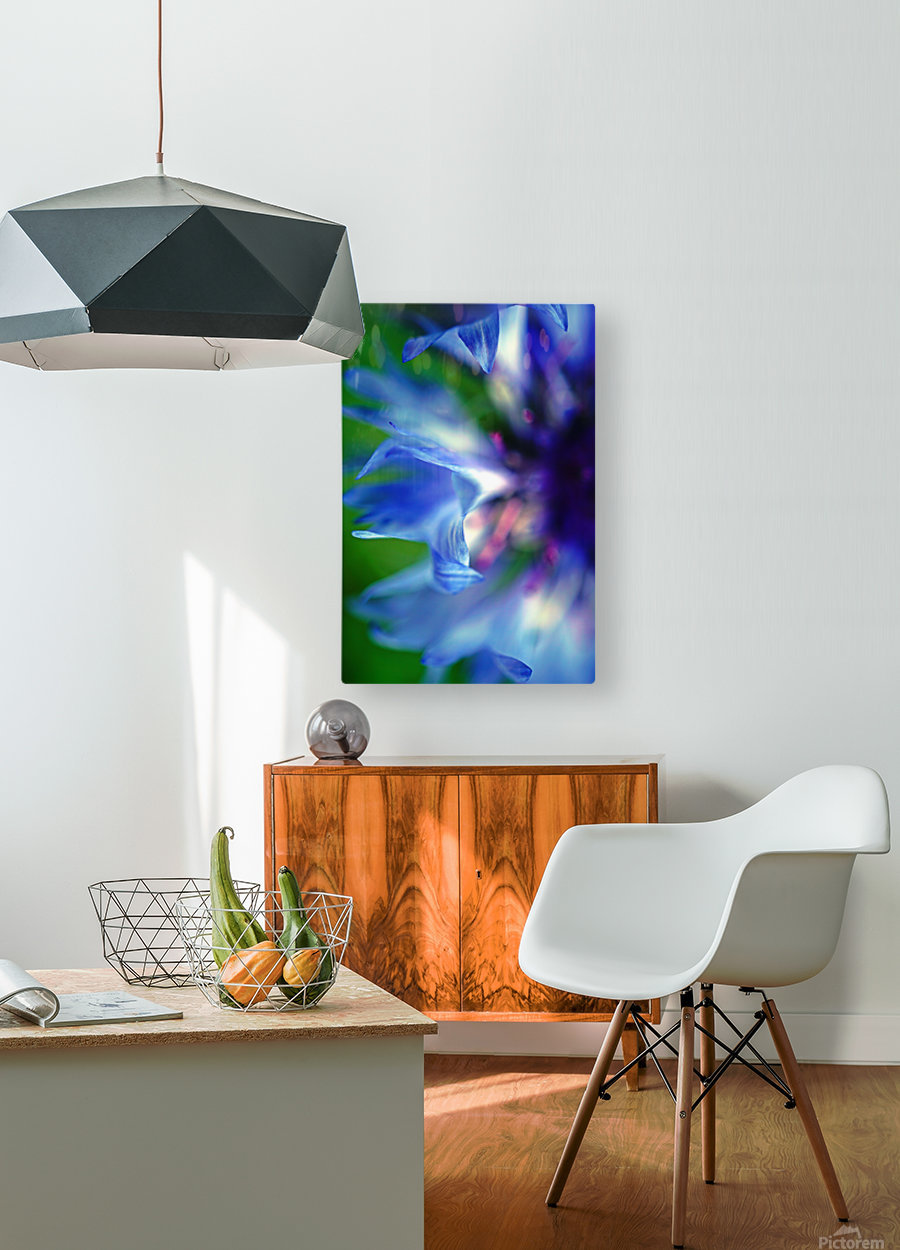 Abstract Pop Color Flower Photography 16  HD Metal print with Floating Frame on Back