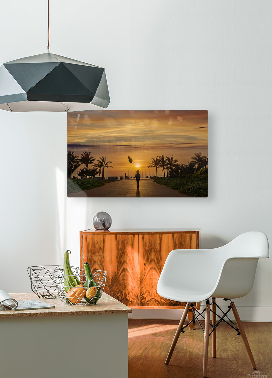AZY_3542  HD Metal print with Floating Frame on Back