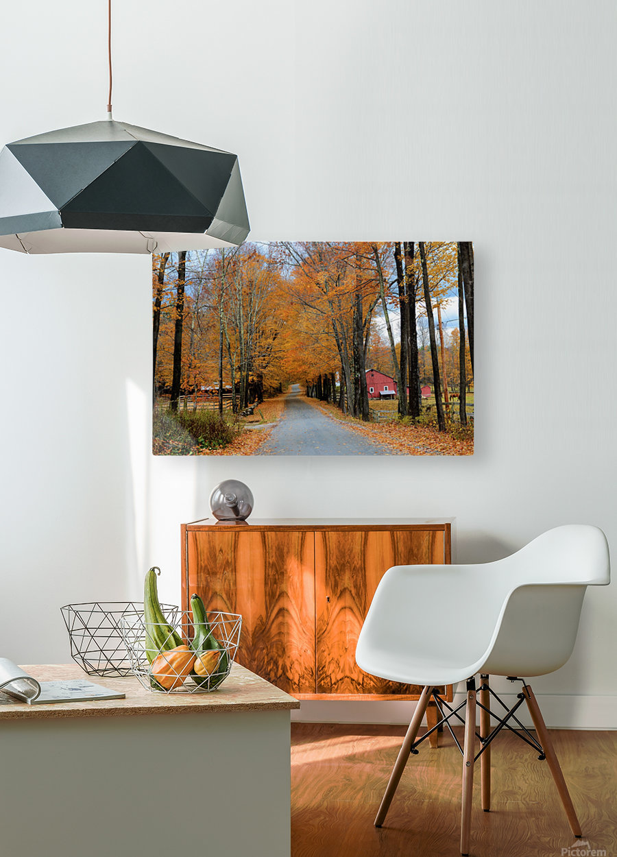Autumn Three Maple Dr. Manchester VT  HD Metal print with Floating Frame on Back
