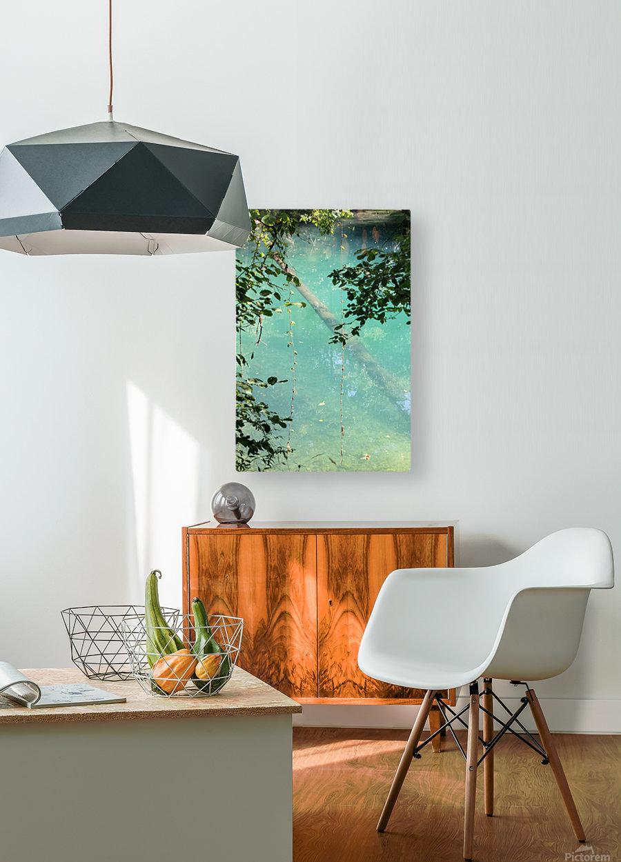 Au fil de leau  HD Metal print with Floating Frame on Back