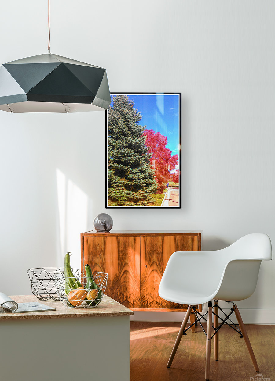 Out-side  HD Metal print with Floating Frame on Back