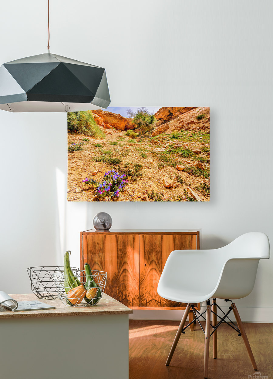 Grotte Sahara  HD Metal print with Floating Frame on Back