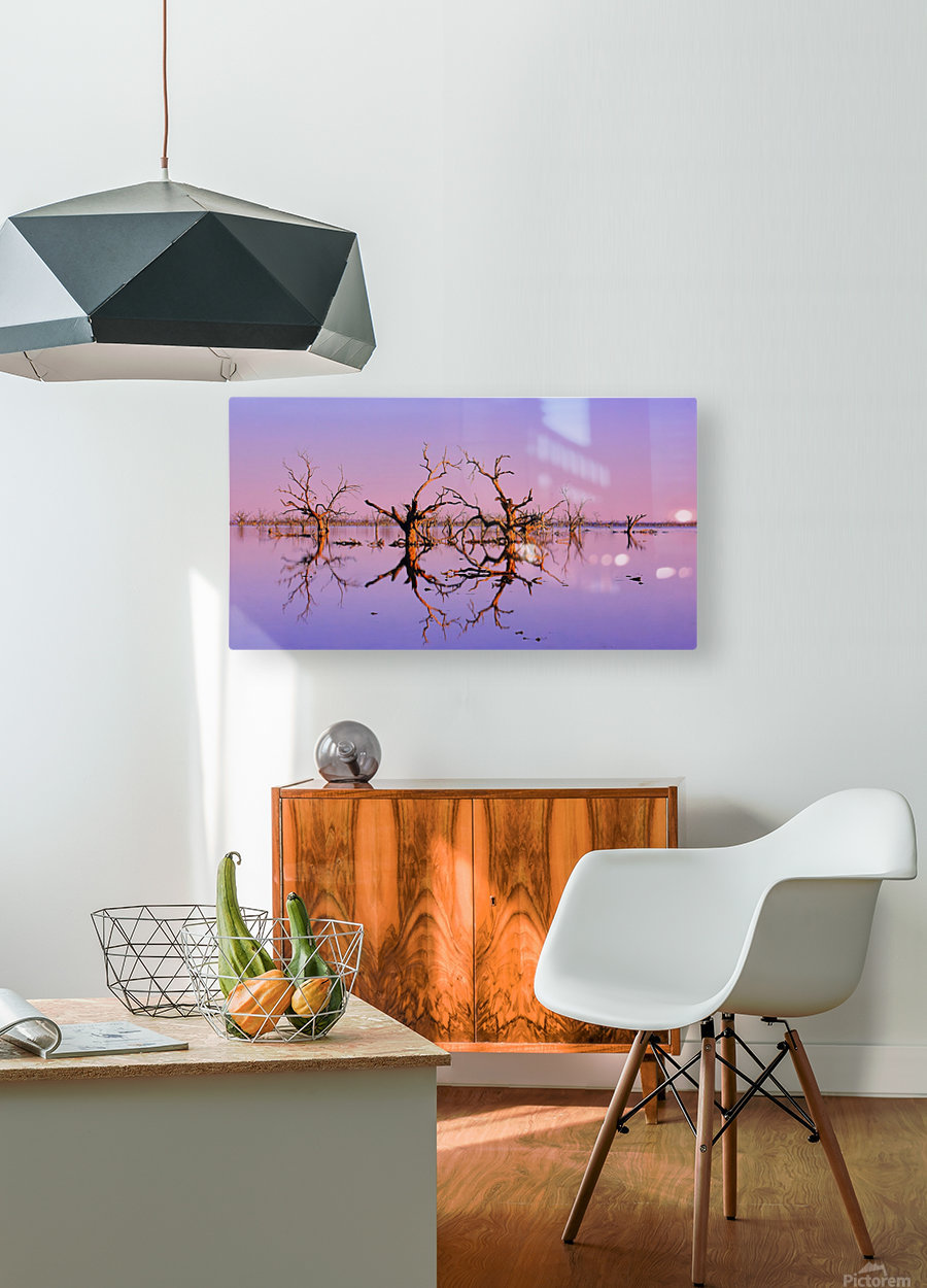 Twin Reflections - Pamamaroo Lake  HD Metal print with Floating Frame on Back