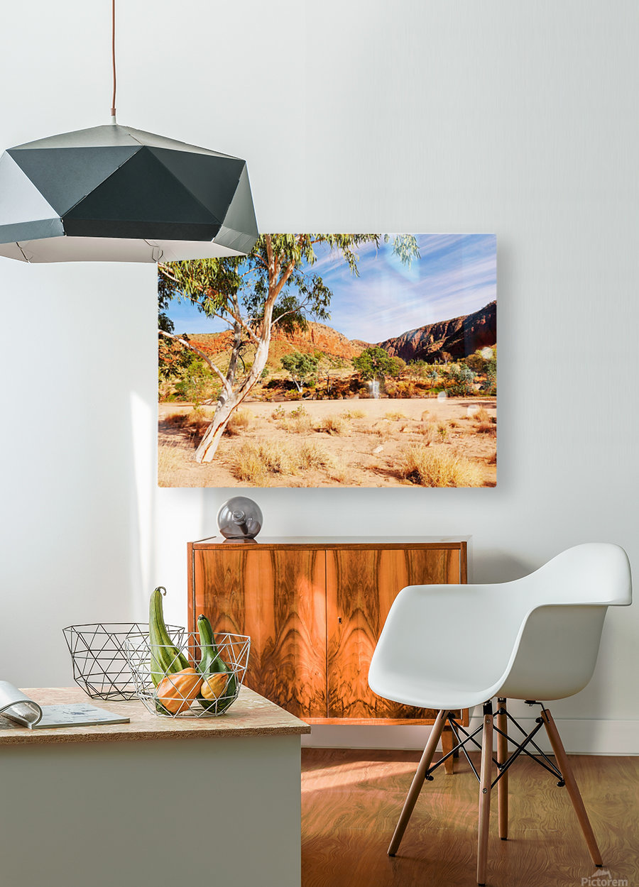 Ghost Gum  - Central Australia 3  HD Metal print with Floating Frame on Back