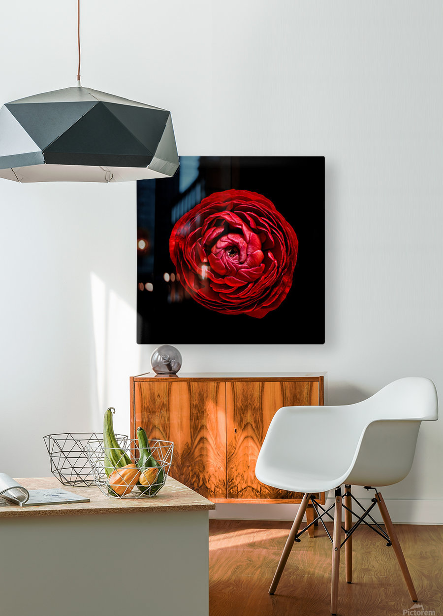 Anemone_3  HD Metal print with Floating Frame on Back