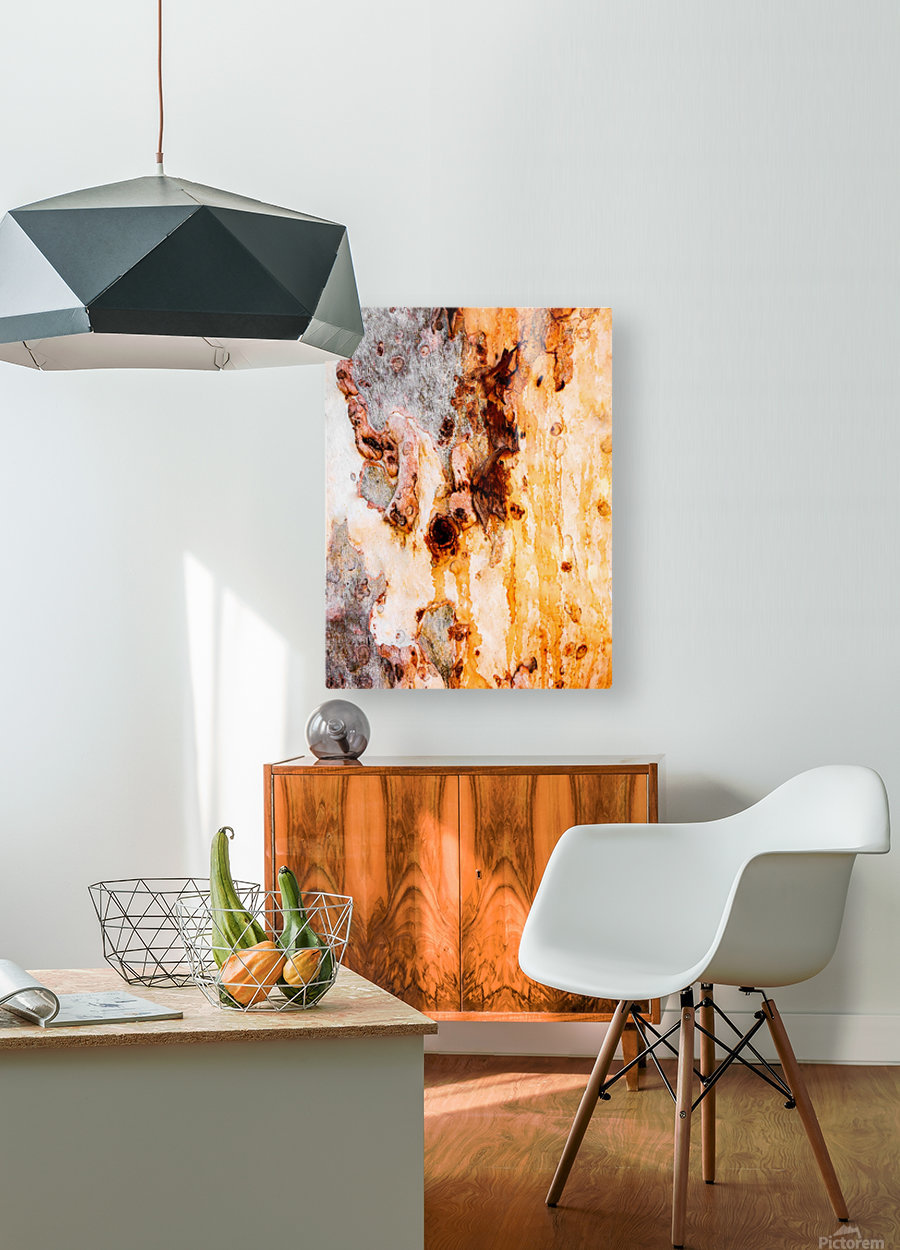 Ghost Gum Bark - 4  HD Metal print with Floating Frame on Back