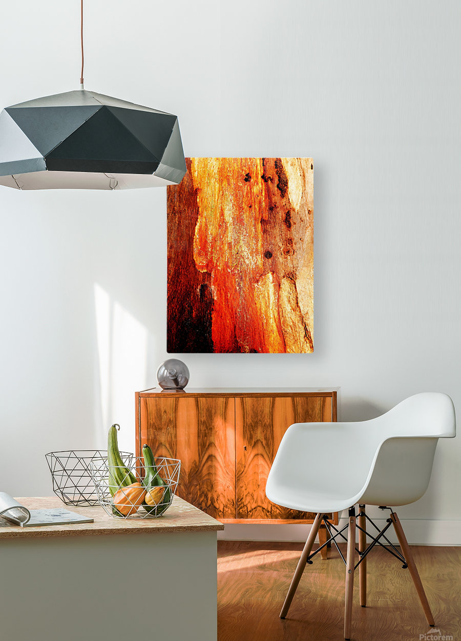 Murray Gum Tree Bark 2  HD Metal print with Floating Frame on Back