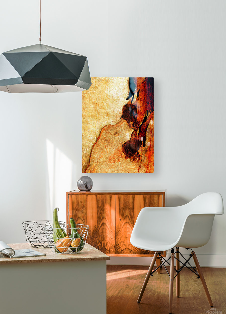 Murray Gum Tree Bark 3  HD Metal print with Floating Frame on Back
