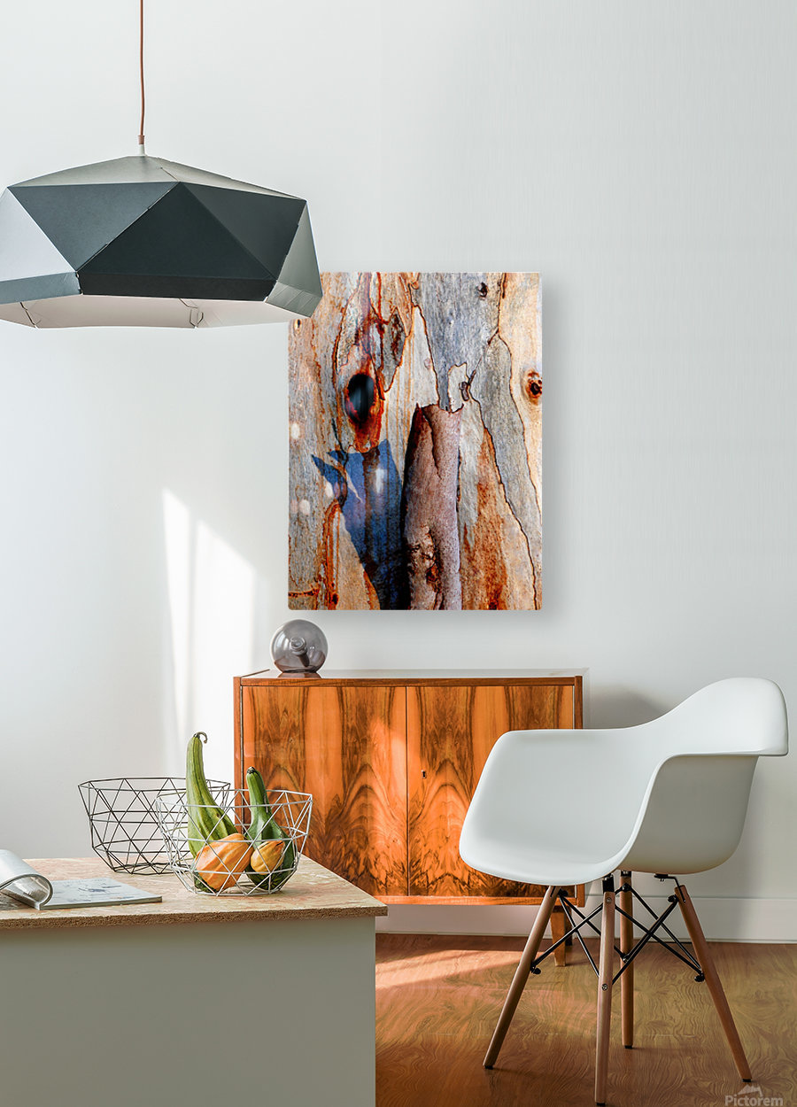 Murray Gum Tree Bark 5  HD Metal print with Floating Frame on Back