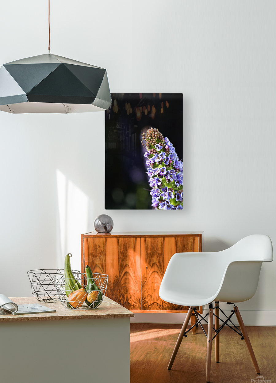 Veronica Flower Delight  HD Metal print with Floating Frame on Back