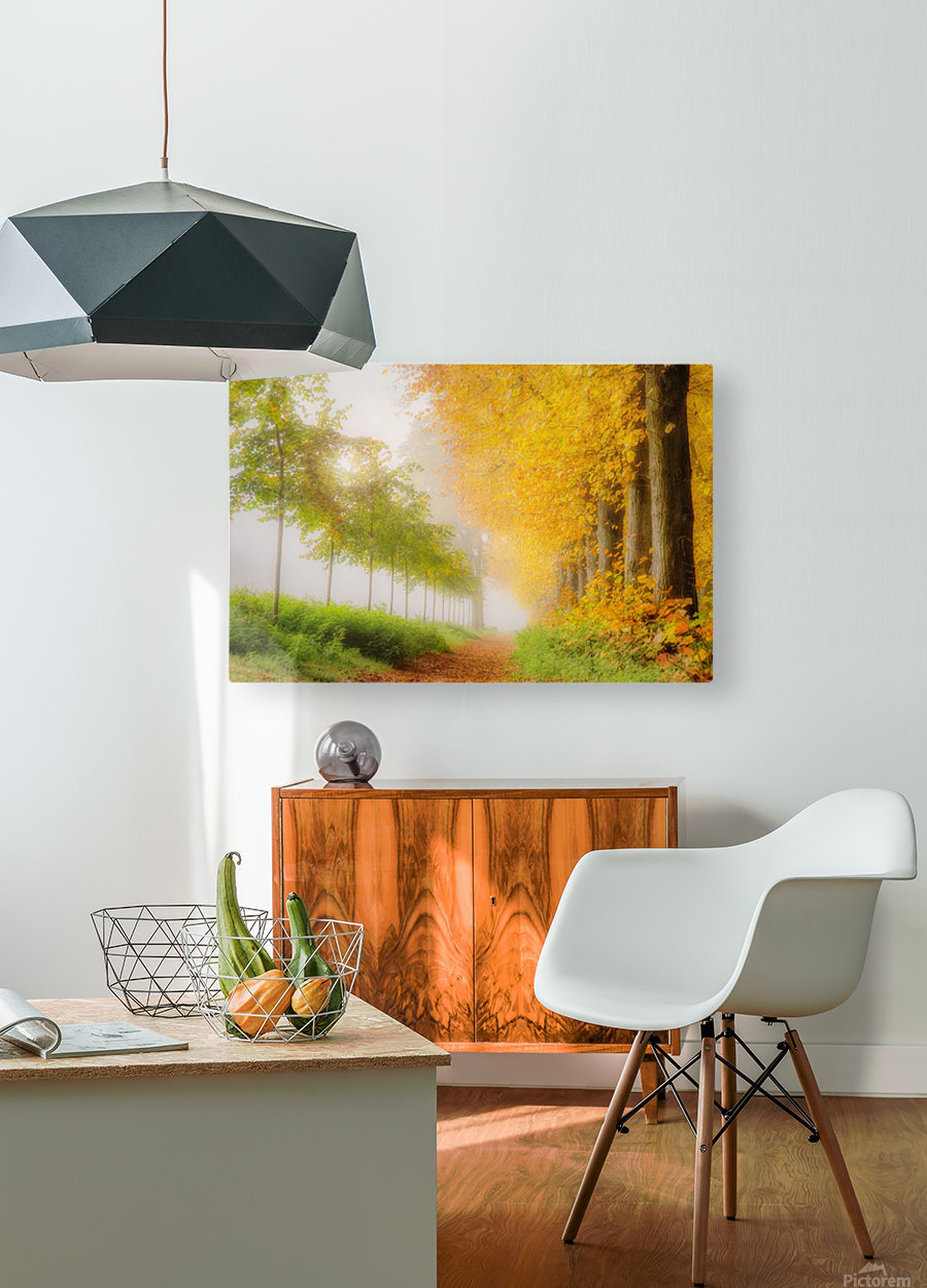 Autumn Colors  HD Metal print with Floating Frame on Back