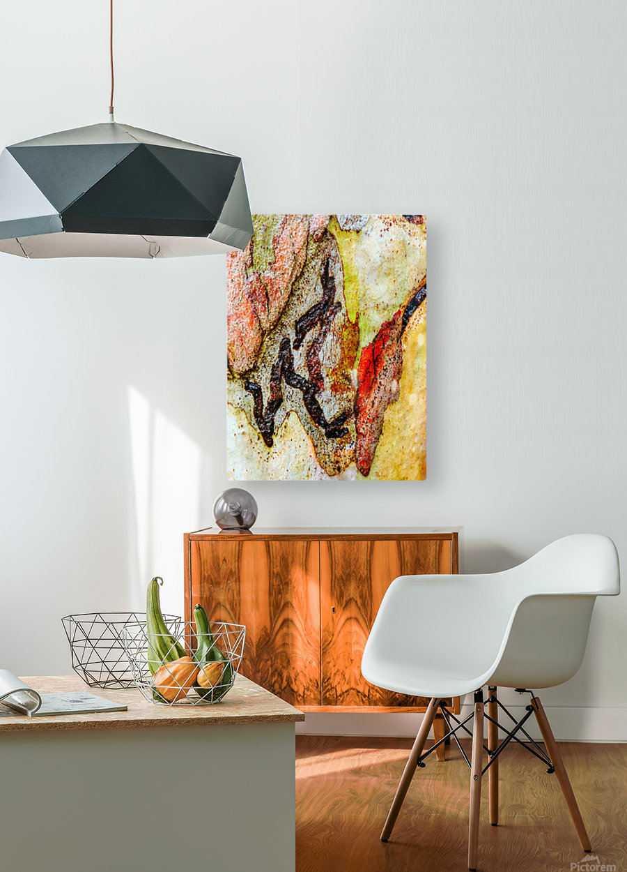 Aussie Gum Tree Bark - 9  HD Metal print with Floating Frame on Back