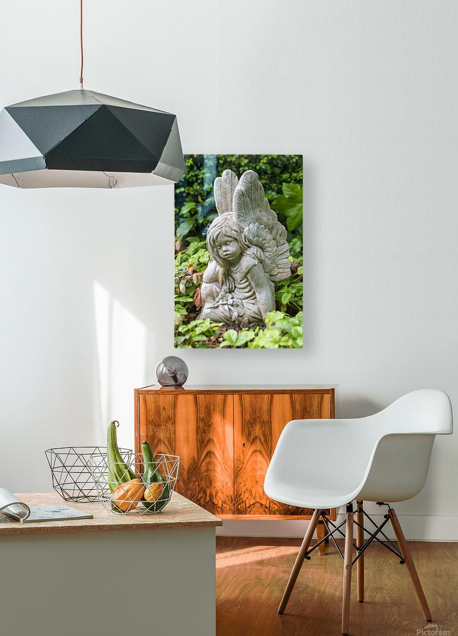 IMGP4937  HD Metal print with Floating Frame on Back