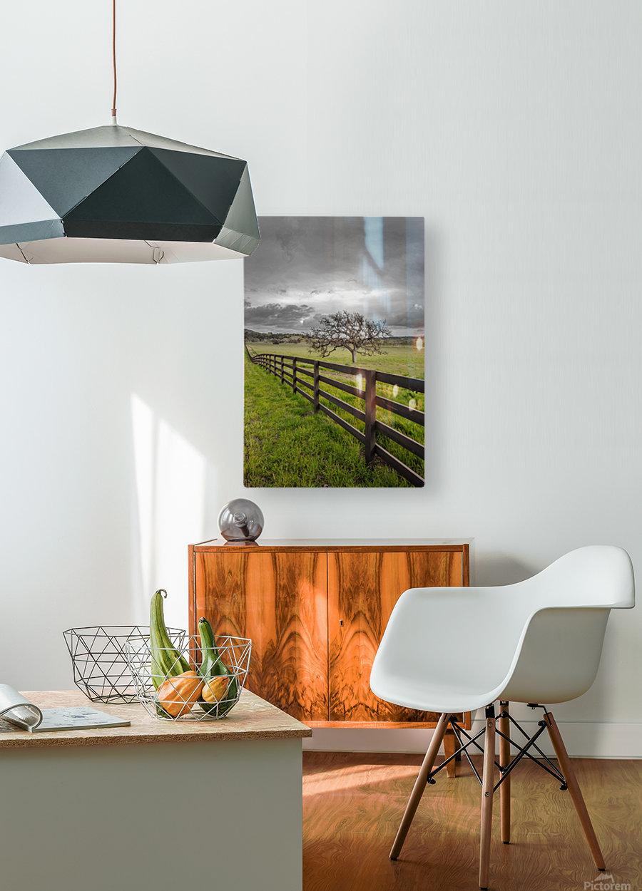 Melancholic  HD Metal print with Floating Frame on Back