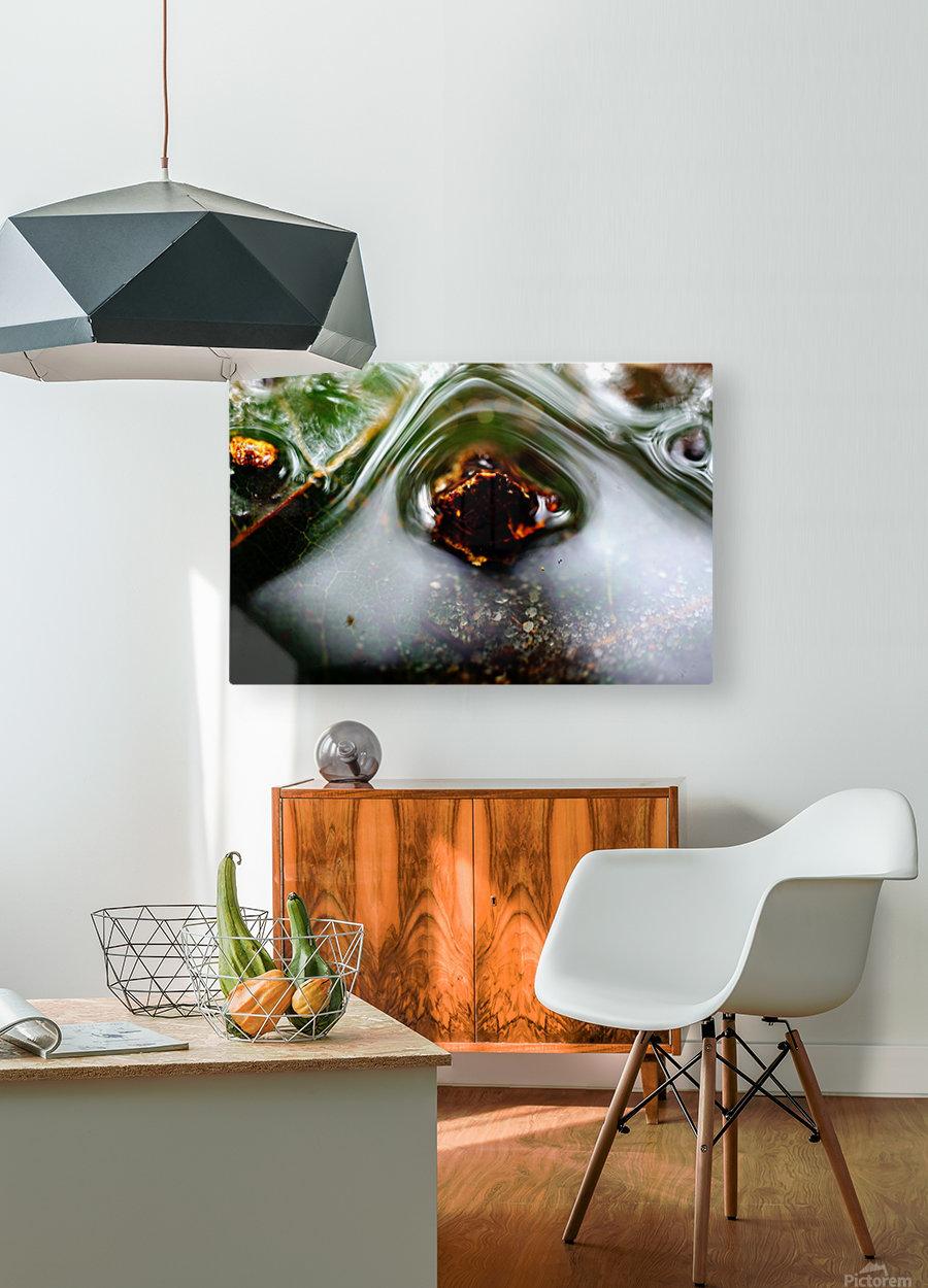 Macro Raindrop Photography Art 45  HD Metal print with Floating Frame on Back