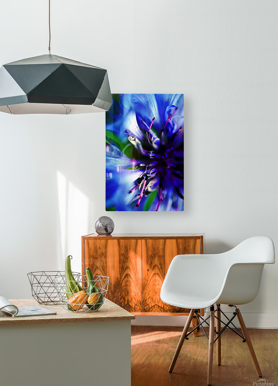 Abstract Pop Color Flower Photography 21  HD Metal print with Floating Frame on Back