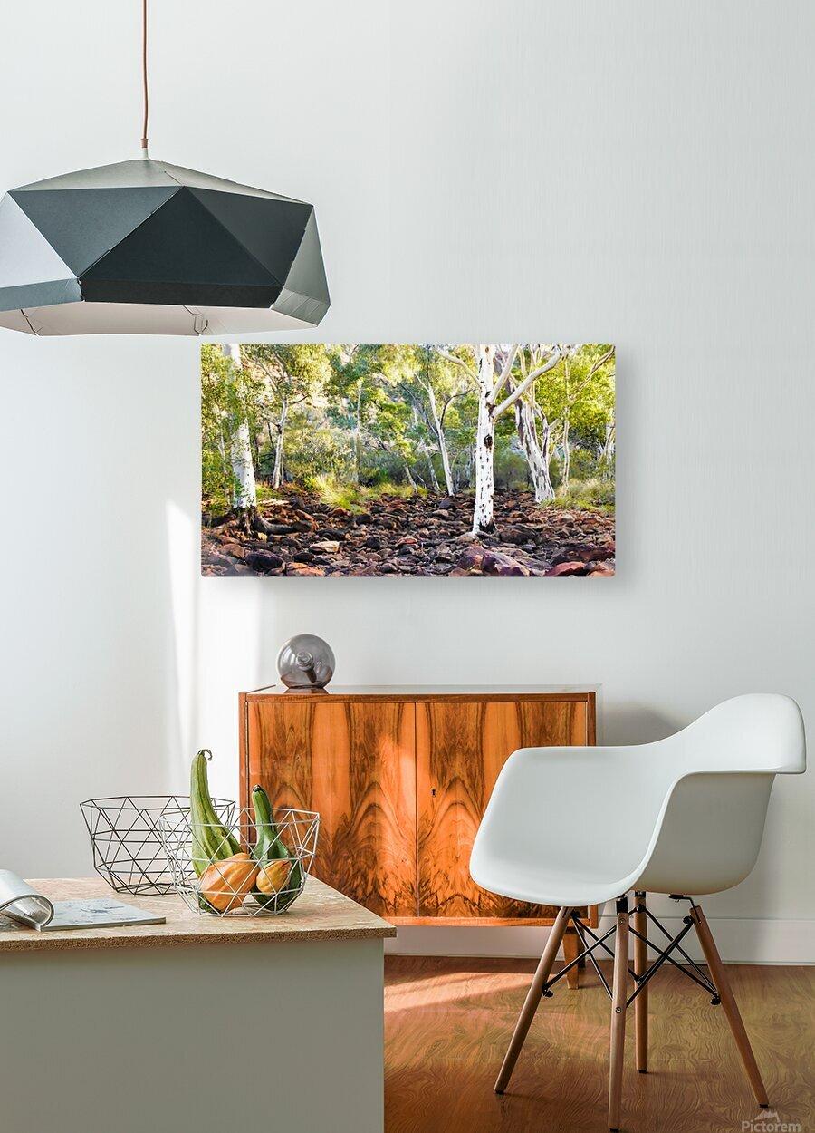 Sunrise on Kings Creek  HD Metal print with Floating Frame on Back