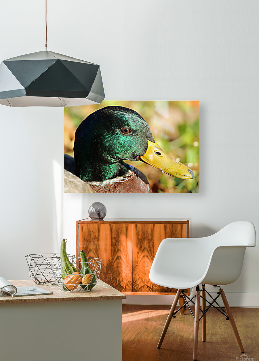 20190909_151825  HD Metal print with Floating Frame on Back