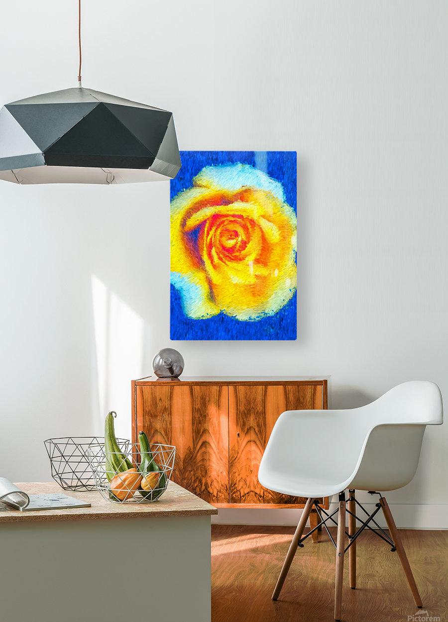 Floating Rose  HD Metal print with Floating Frame on Back