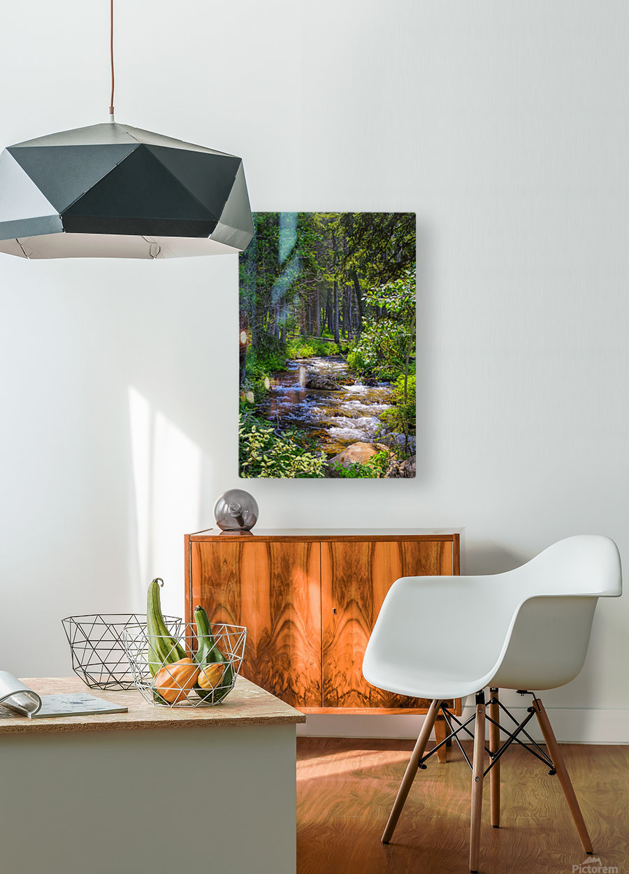 Fairy Creek  HD Metal print with Floating Frame on Back
