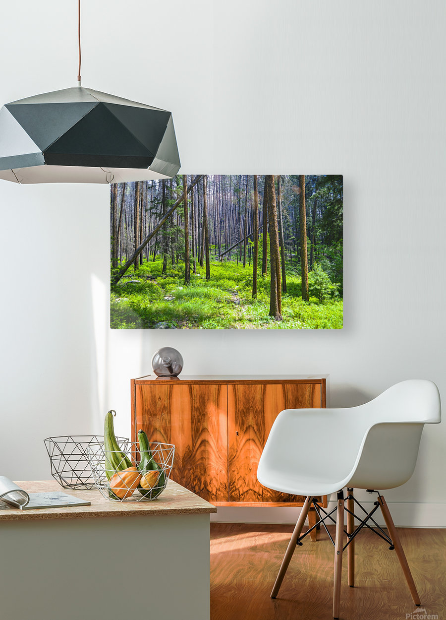 Density  HD Metal print with Floating Frame on Back