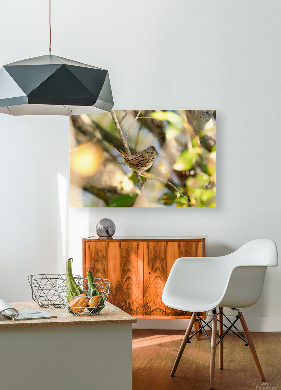 BETSY  HD Metal print with Floating Frame on Back