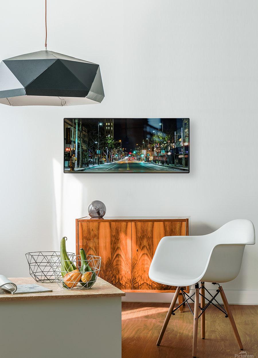 Santa Monica  HD Metal print with Floating Frame on Back