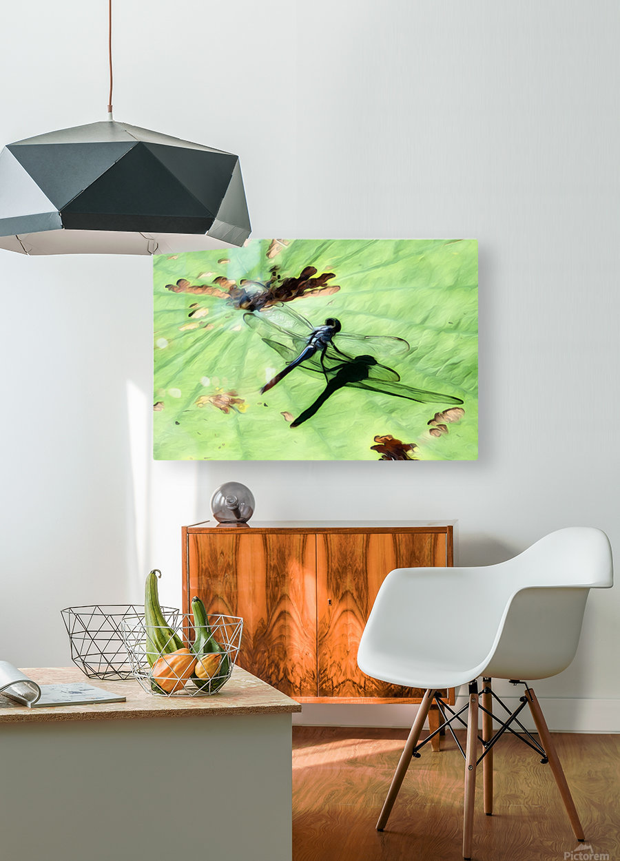 Dragon Fly  HD Metal print with Floating Frame on Back