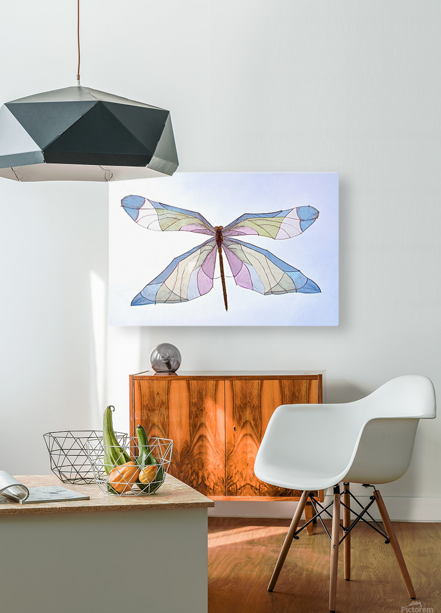 Dragonfly  HD Metal print with Floating Frame on Back
