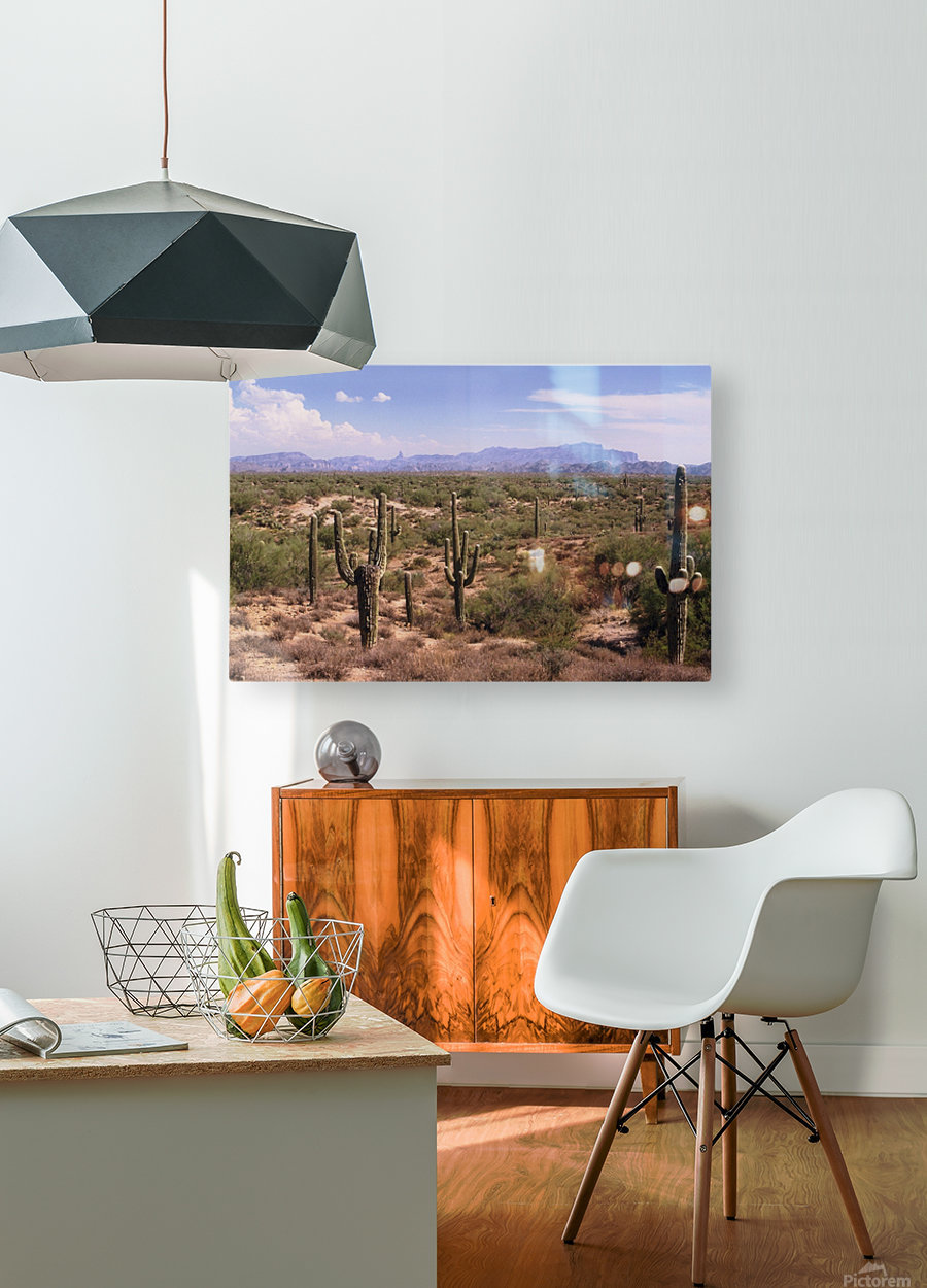 Sonora Desert Landscape Arizona Photograph  HD Metal print with Floating Frame on Back