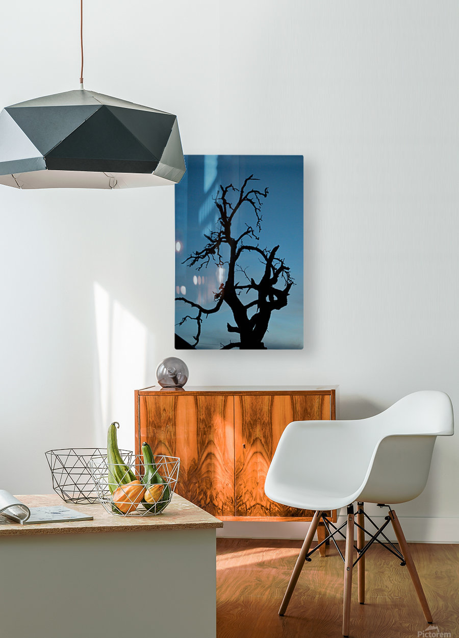 Haunted Tree  HD Metal print with Floating Frame on Back
