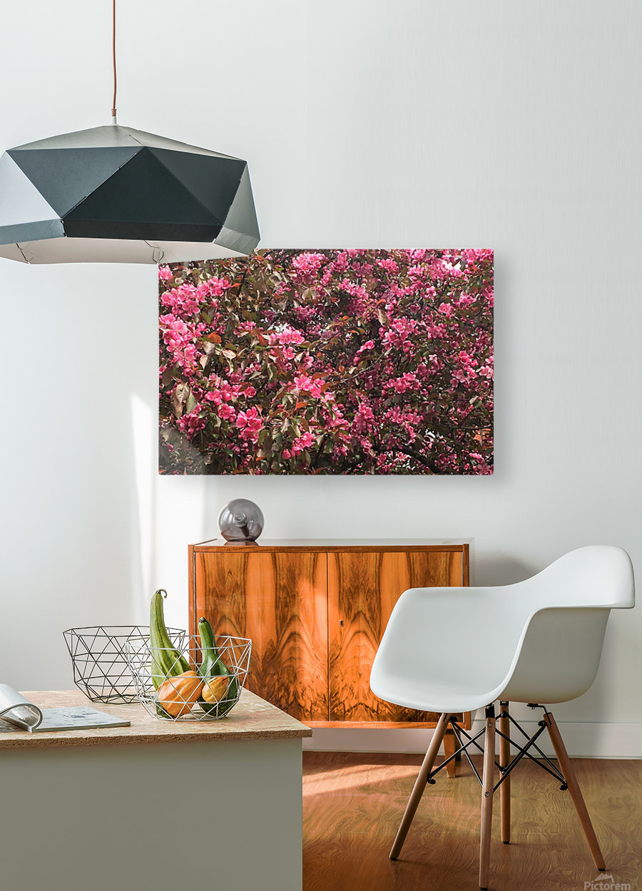 Flowering Tree  HD Metal print with Floating Frame on Back