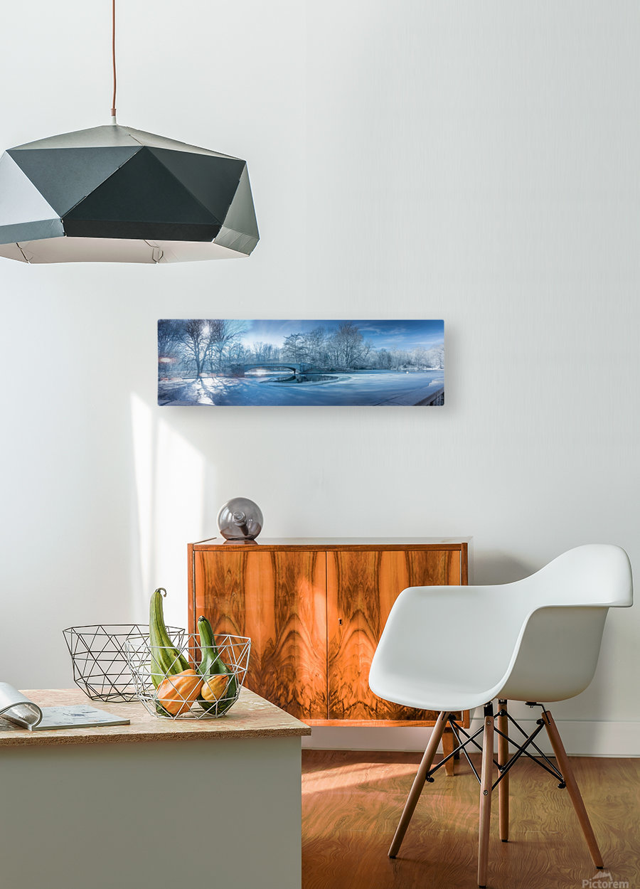 A winter day in the Prospect Park  HD Metal print with Floating Frame on Back