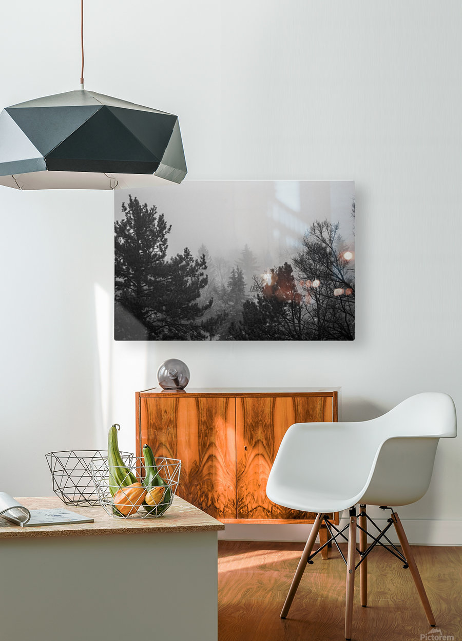 Foggy Forest  HD Metal print with Floating Frame on Back