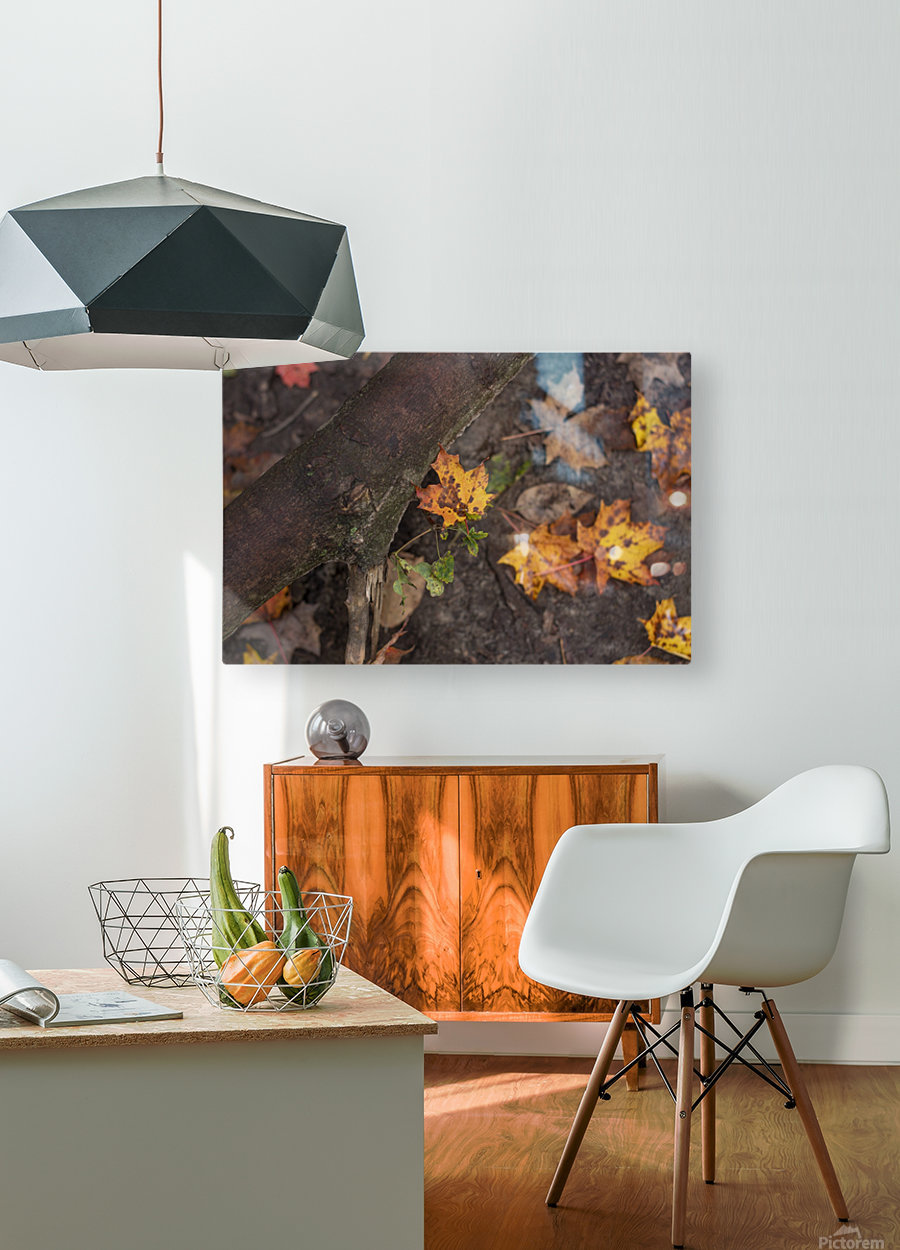 Fallen Leaves  HD Metal print with Floating Frame on Back