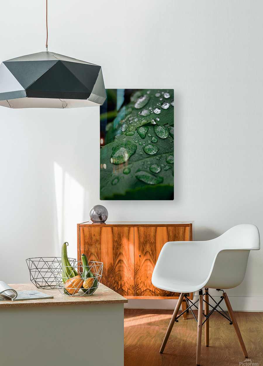 After rain  HD Metal print with Floating Frame on Back