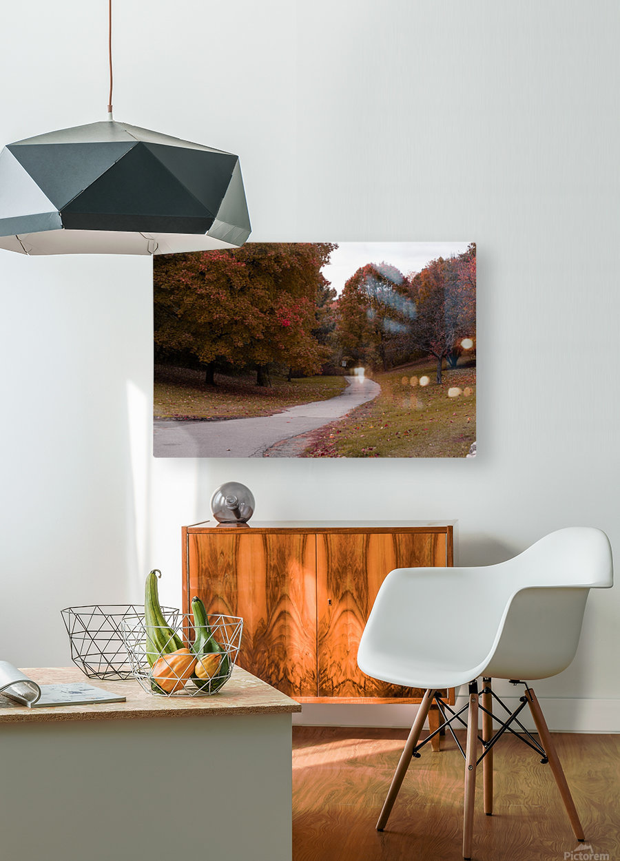 Autumn in the park  HD Metal print with Floating Frame on Back