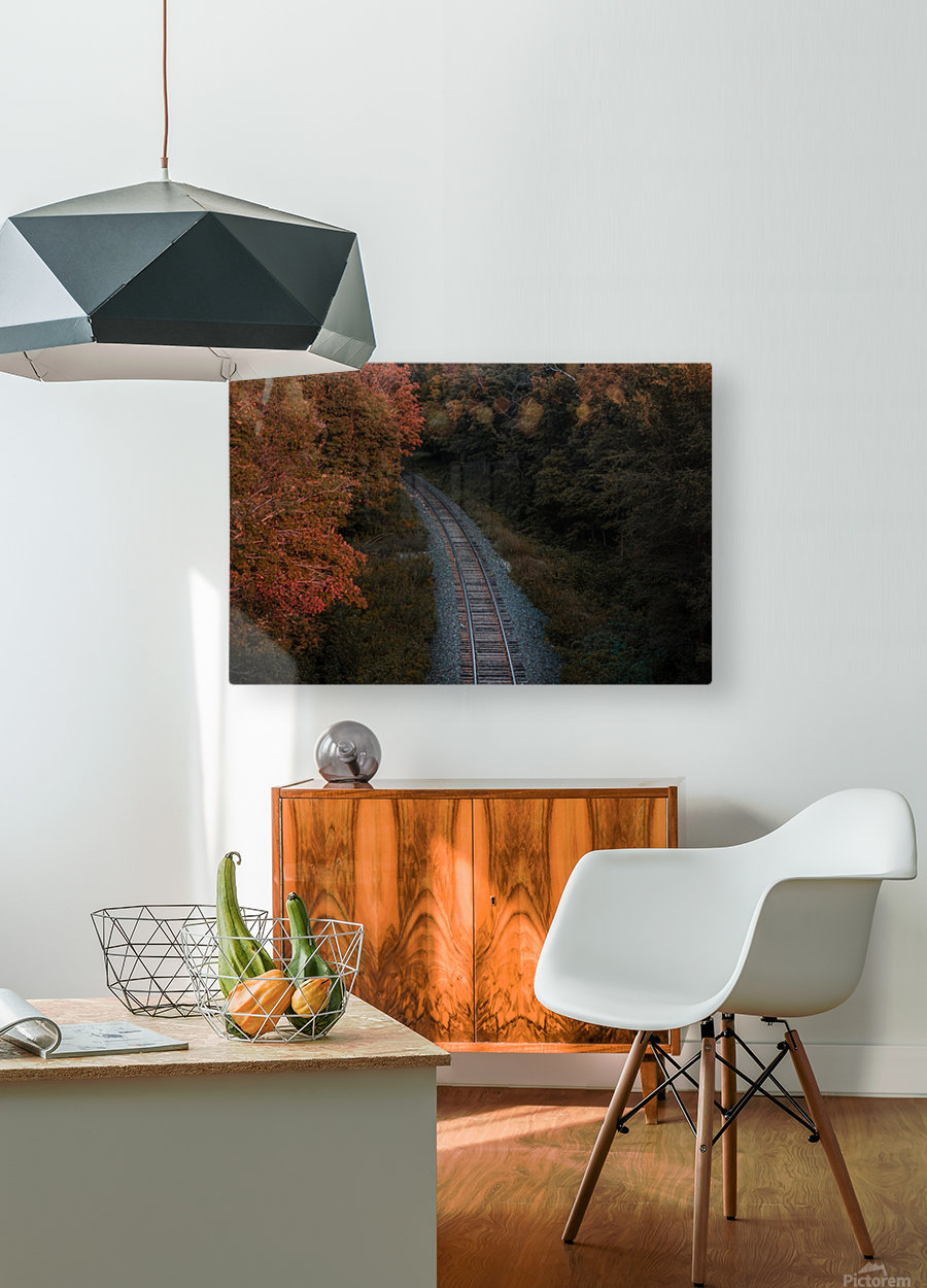 Train track  HD Metal print with Floating Frame on Back