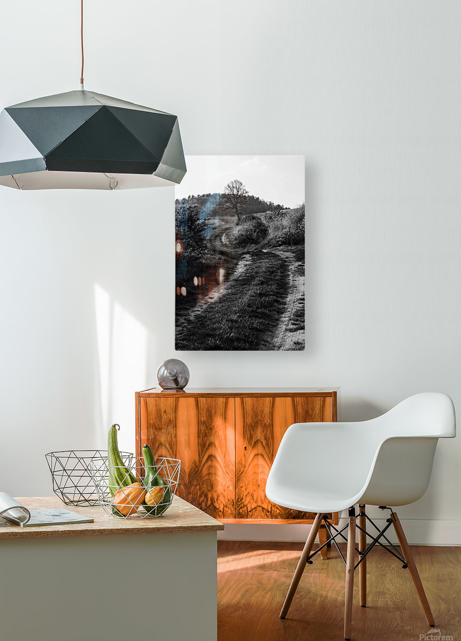 The path  HD Metal print with Floating Frame on Back
