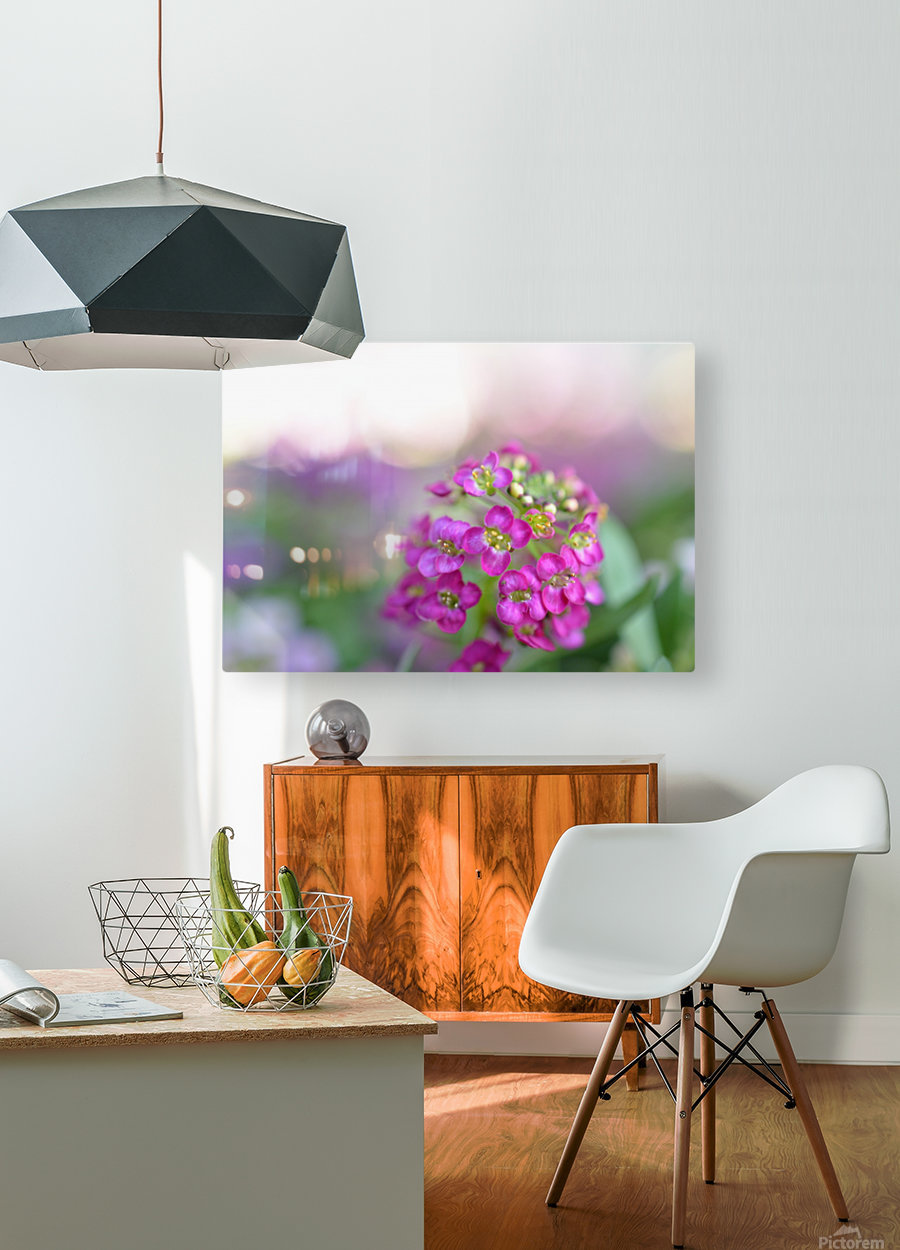 Pink Flowers Soft Photography  HD Metal print with Floating Frame on Back