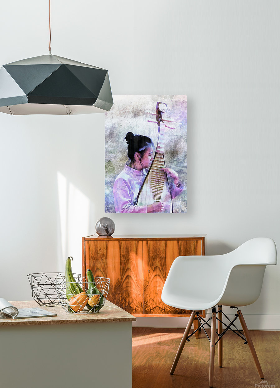 Chinese Musical Interlude  HD Metal print with Floating Frame on Back