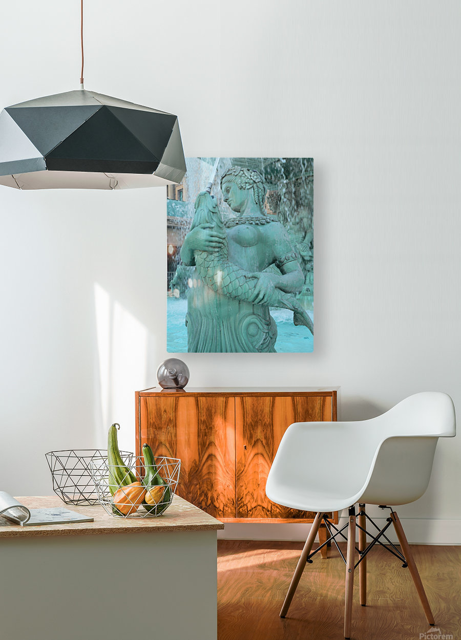 Statue  HD Metal print with Floating Frame on Back